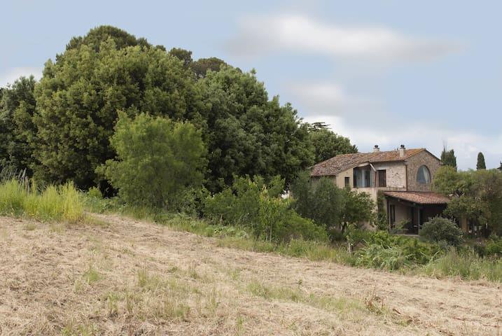 The Granary, wonderful view 2 flats - Terricciola - House
