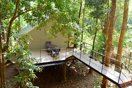 River side cottage - Meppadi