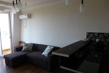 nato's Apartment