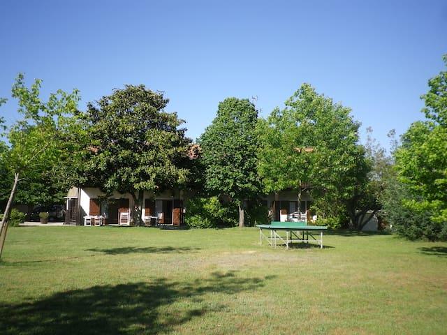 Studio 4 personnes bassin Arcachon - Andernos-les-Bains - Wohnung