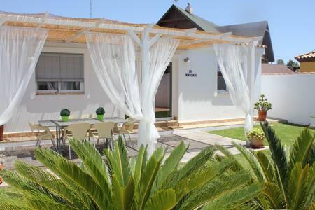 Lovely apartament near the beach