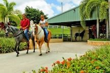 Equestrian center at Palmas