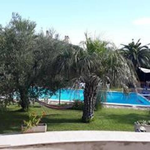 La Ginestra, B&B  immerso nel verde con piscina