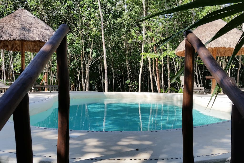 Terrasse et piscine / Terrace  and pool / Terraza y alberca.