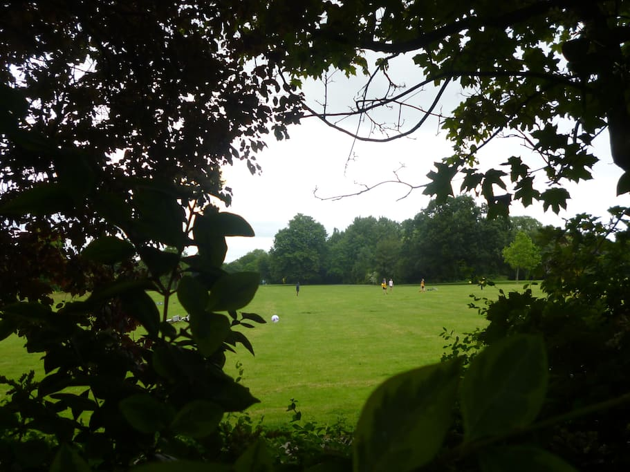 The wonderful Peckham Rye park, which is the other side of the street