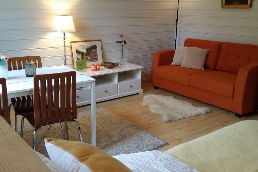 Spacious studio with all basic needs. The sofa can be made into a comfortable extra double bed.