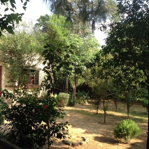 Private house near Delhi University campus