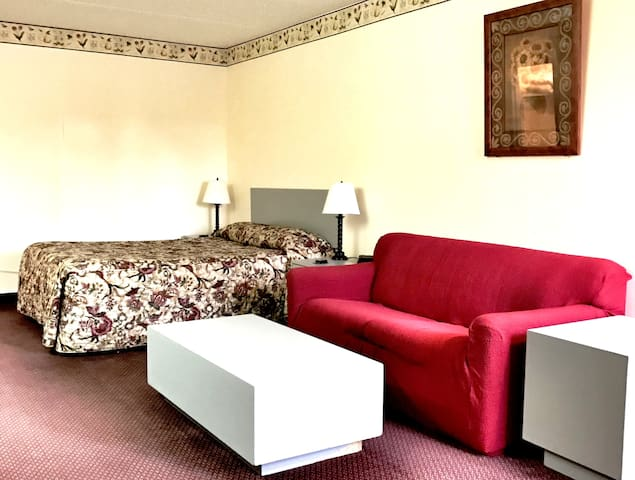 1 queen bed and couch,kitchenette,non smoking - Watertown - Apartamento