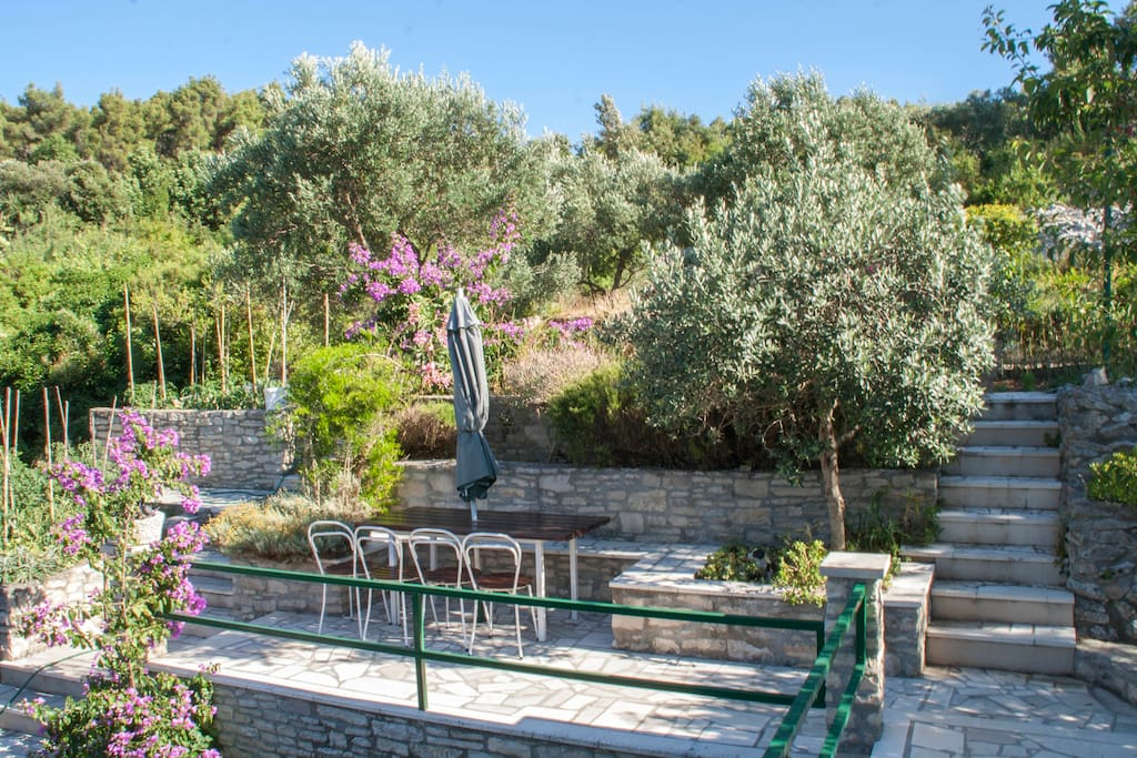Before you come to the entrance of the apartment there is a little terrace where you can enjoy your time under the shade of olive trees...