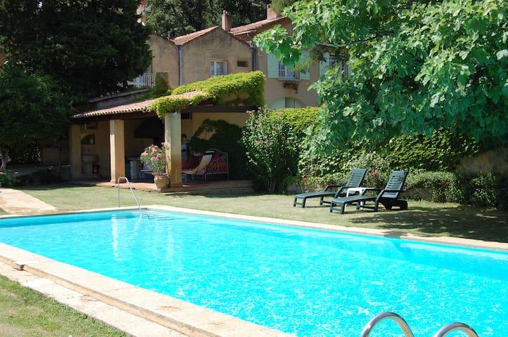 Maison Olivier &  Provencal Vinyard - Laudun-l'Ardoise - Villa