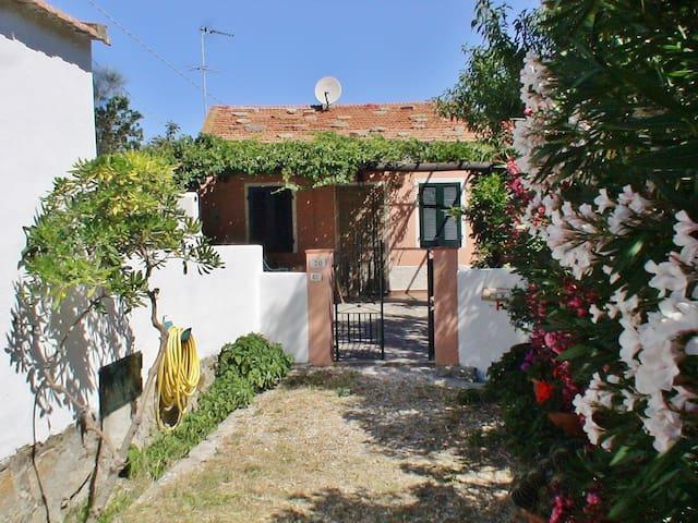Casa Oleandro - Colle D'Orano - Talo