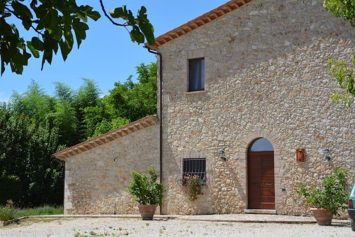 Casale con Piscina, jacuzzi in parco di 70000 mq - Lugnano in Teverina - Bed & Breakfast