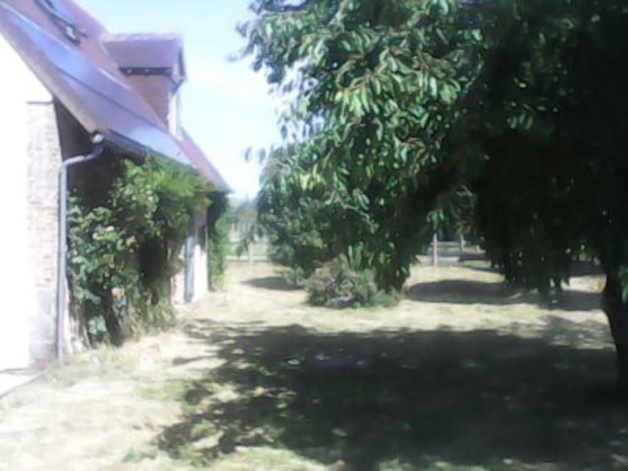 L'arrière de la maison, qui donne sur le champ des poneys.