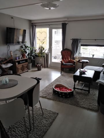 Small, cozy apartment 20 minutes from Oslo city.