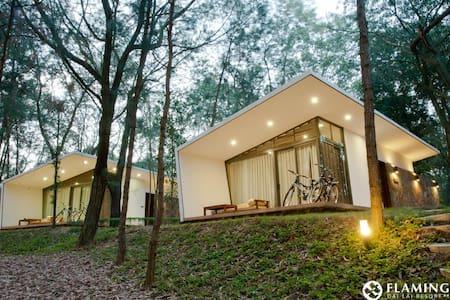 Hilltop villa in Flamingo Dai Lai Resort