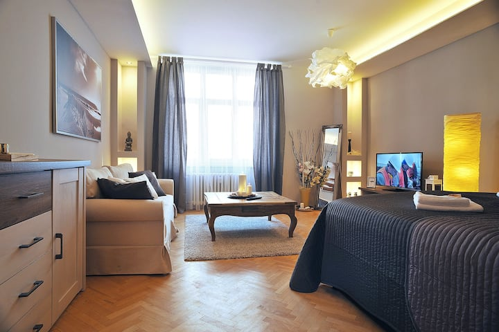 Luxury apartment in Ostrava city name Scandi