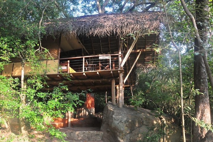 Rustic Jungle Cottage in Sigiriya * Nature lovers!