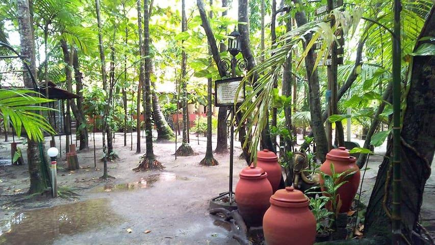 Eco friendly Homestay near Fishing Farm - Kerala - House
