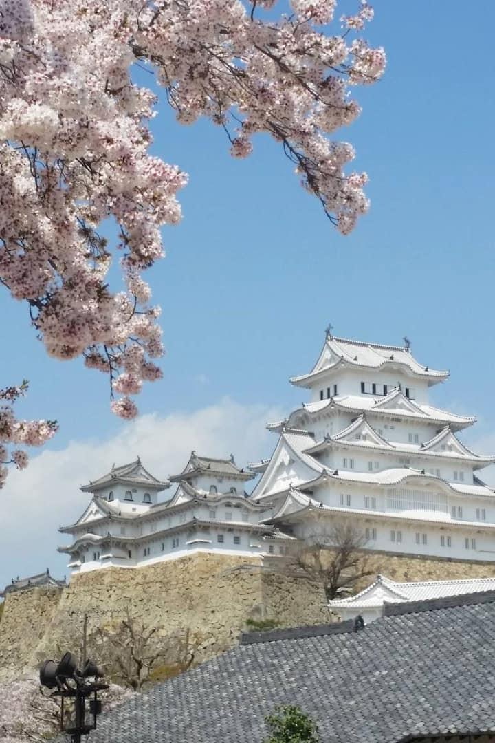 Beautiful Himeji Castle