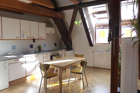 Sunny maisonette, cosy & wifi, 75m² - Graz - Lägenhet