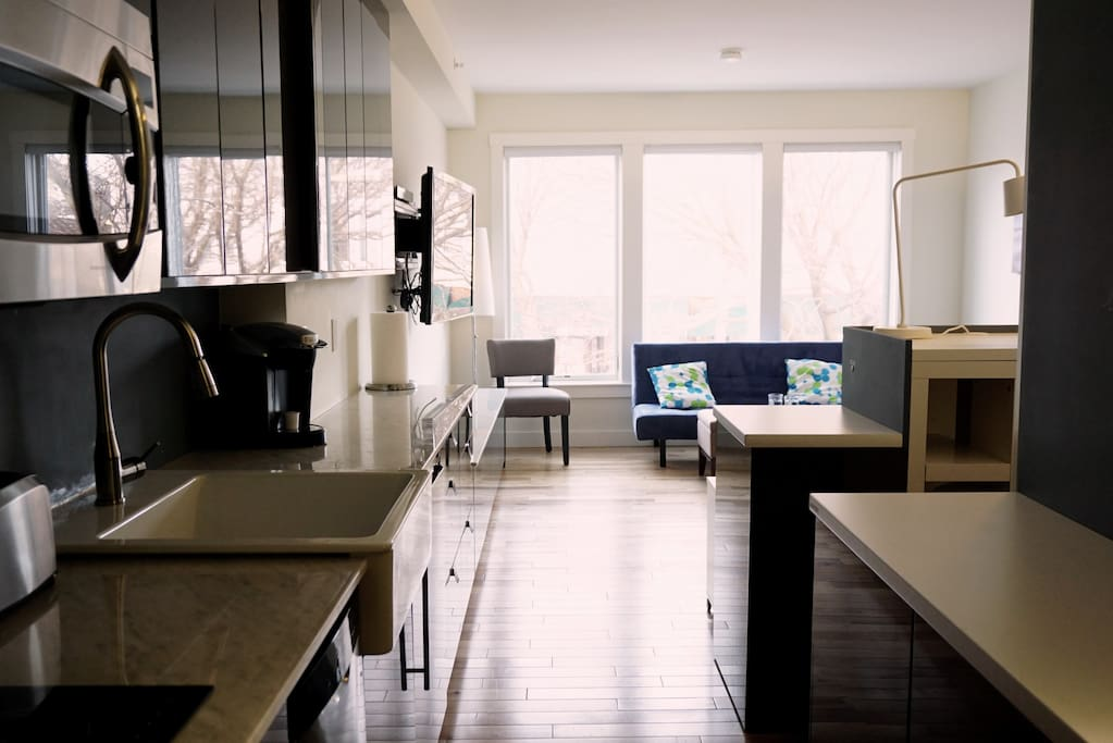 Kitchen, study area, bedroom, living room all in one room