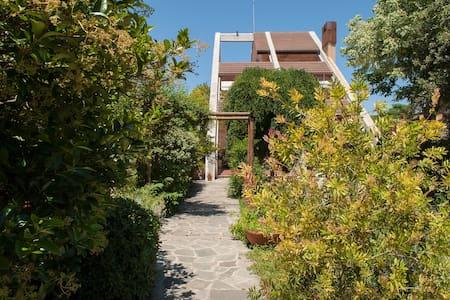 Sunny Attic in Green Area - Bari