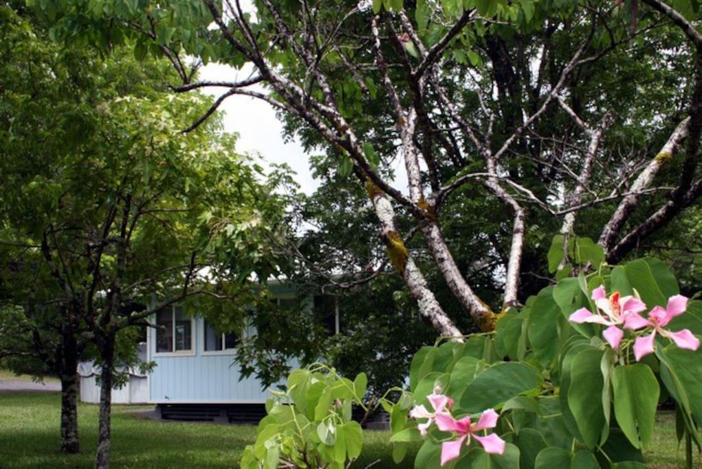 Nakukui Cottage