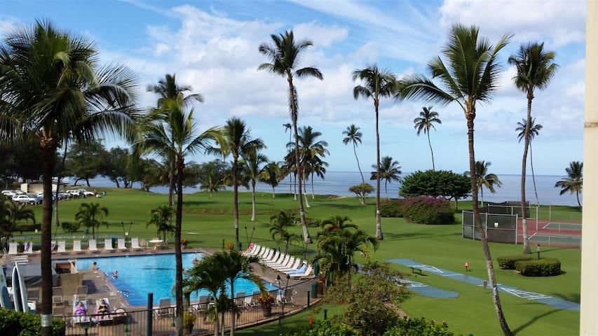 Beautiful 1 bedroom condo in Maui