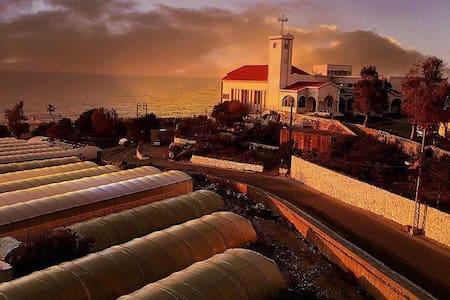 Lebanon-Beach-cozy apart sea view
