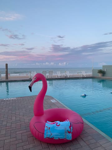 The Flamingo Retreat On The BEACH