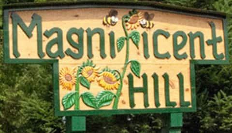 Magnificent Hill -  West Campsite