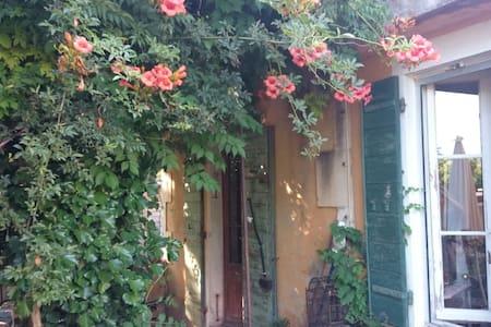 ' Mazet Dethier ' Provence Charm - Saint-Rémy-de-Provence