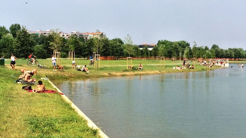the lake in the park behind my place