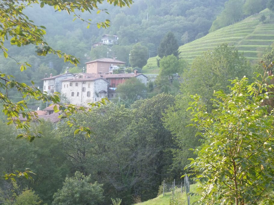 The borgo (hamlet)