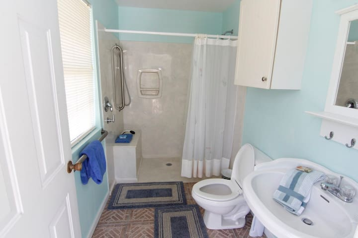 The florida room bathroom, right near the pool with walk in shower
