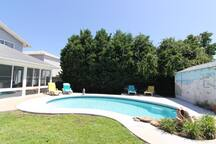 Another look at the back yard