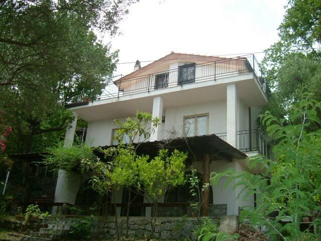 Appartamento con giardino in villa - Scario - Villa