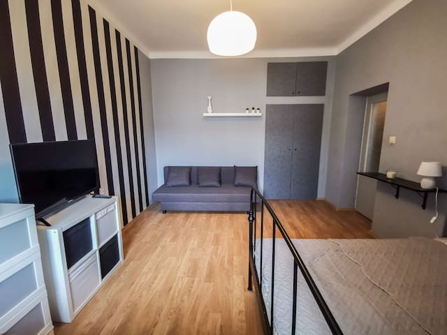 SINGLE ROOM APARTMENT IN THE MIDDLE OF THE CITY
