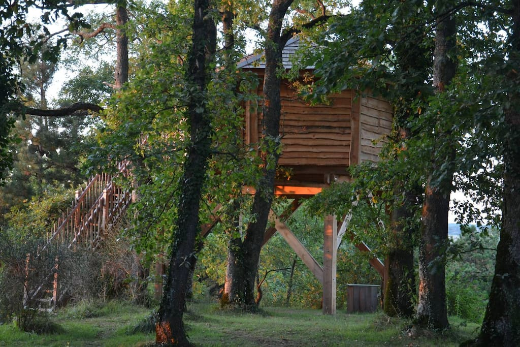 cabane gorgone d 39 arbrakabane cabanes dans les arbres louer peyrissas midi pyr n es france. Black Bedroom Furniture Sets. Home Design Ideas