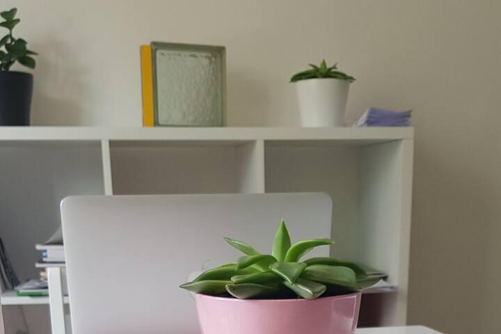 Minimalius : convivialité et simplicité