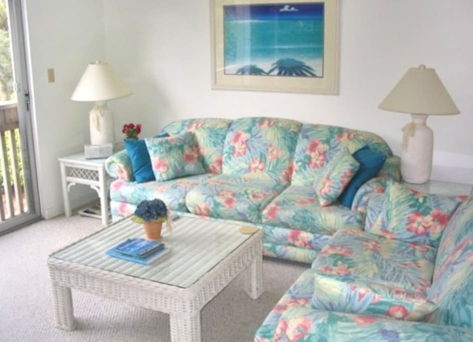 Living area with sleeper sofa.