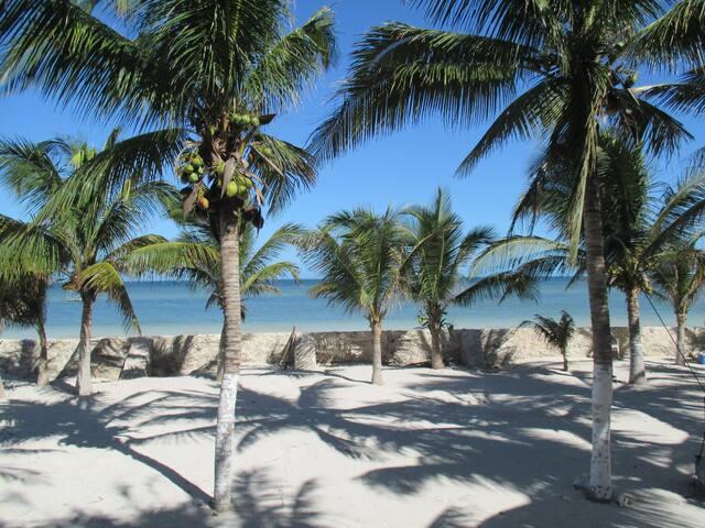 Simply Paradise. Escape To The Yucatan. 5BR/5BA.