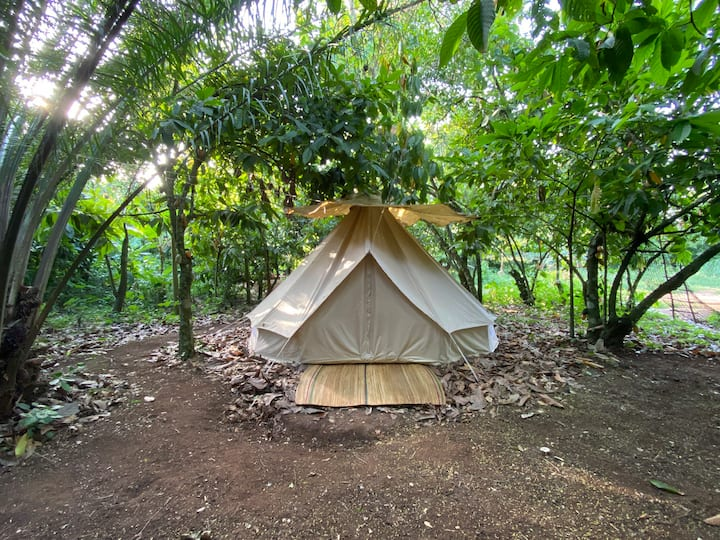 Cocoa Forest Glamping