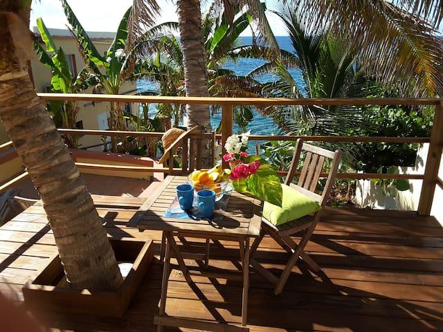 Tropical garden / ocean view 2 bedroom/2 bathroom