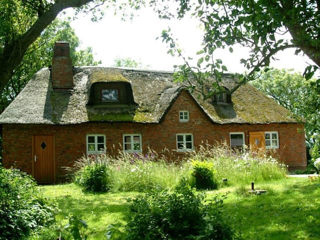 Ferienhaus Linde - Osterhever - บ้าน