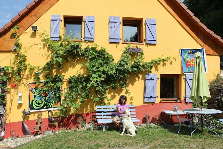 Chambre privée/ rando, peinture - Lalaye - Hus