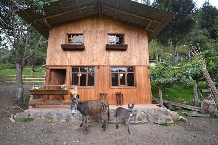 Hacienda Chan Chan - A Dairy Farm Chalet - Cuenca - Casa