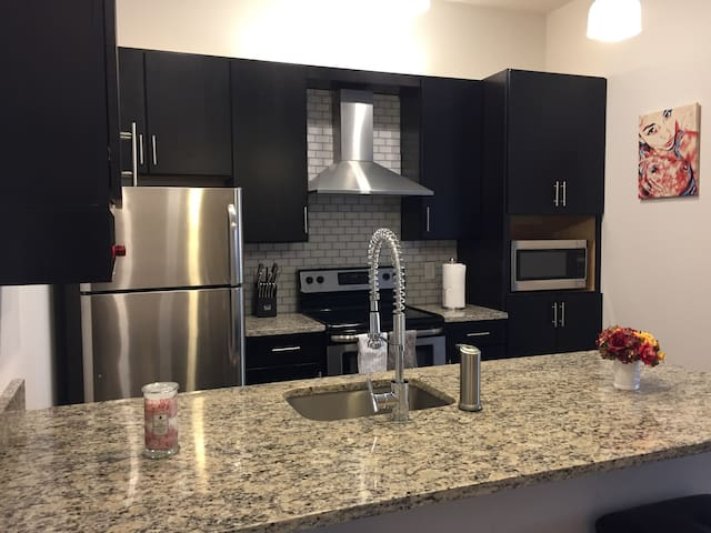 Modern 1 bed apartment in Downtown Richmond!