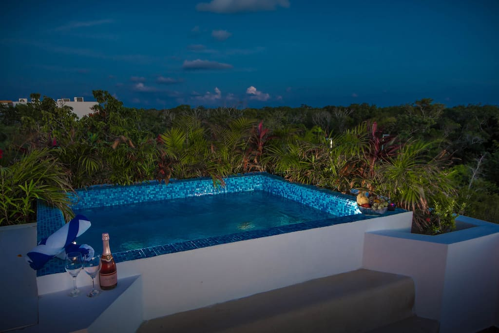 Romantic Evening Under the Stars in the plunge pool?