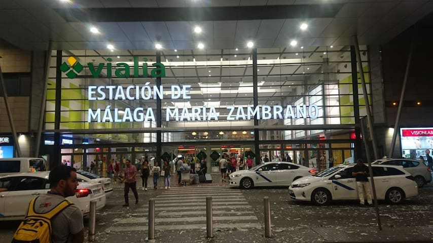 Estación de trenes María Zambrano. En su interior se encuentra el Centro Comercial Vialia.
